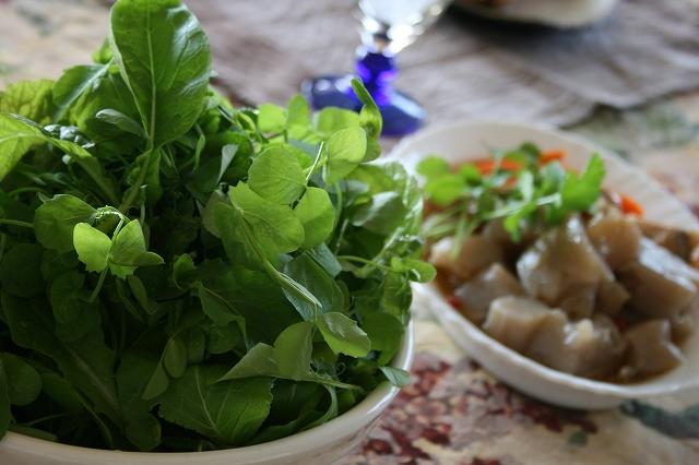 豆苗たっぷりグリーンサラダ
